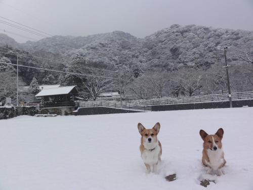 雪と記念撮影