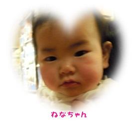 DSCN6132.jpg