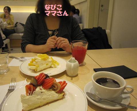 カフェコムサのケーキ、すごく美味しかったよ~