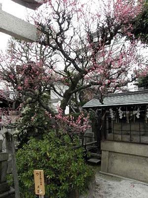 kandaijin_100312_2.jpg