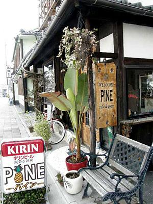 pine_100322_2.jpg