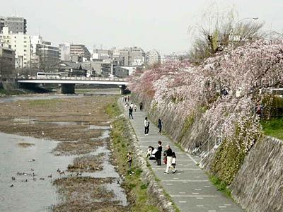 tukushi_100320_3.jpg