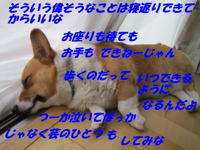 IMG_3437.jpg