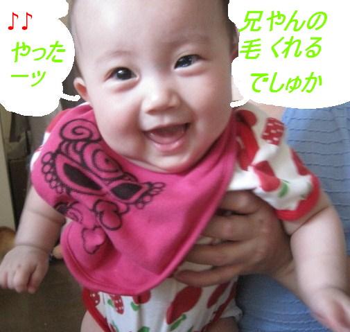IMG_3799.jpg