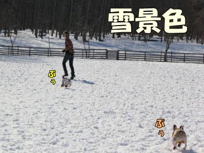 1-2_20130212152435.jpg