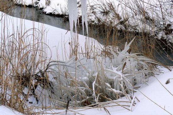 100103 用水パイプ下の氷
