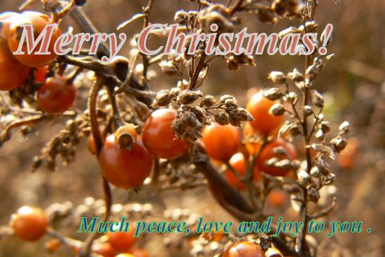 メリークリスマス!2009