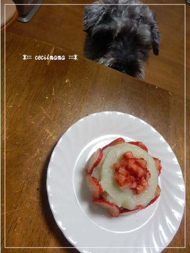 バースデーケーキ_セシル_1