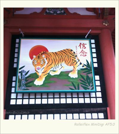 虎の奉納画