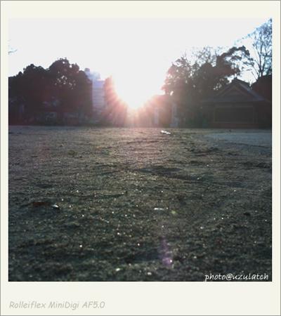 ローアングルな夕日