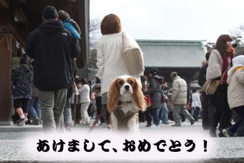 20100101_001.jpg
