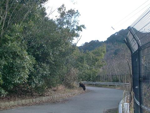 20100101_007.jpg