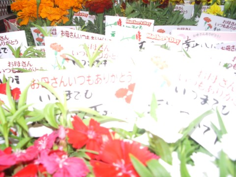 20100509_006.jpg