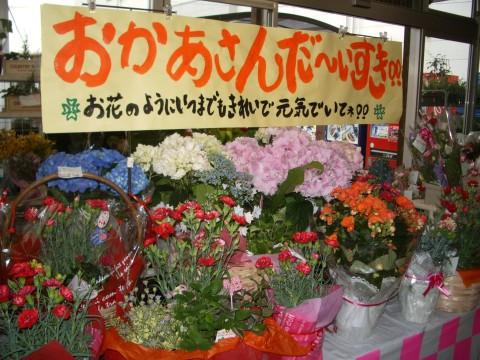 20100509_020.jpg