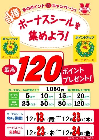 20101212_026.jpg