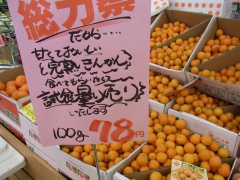 2010_0228_004.jpg