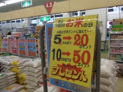 2010_0309_022.jpg