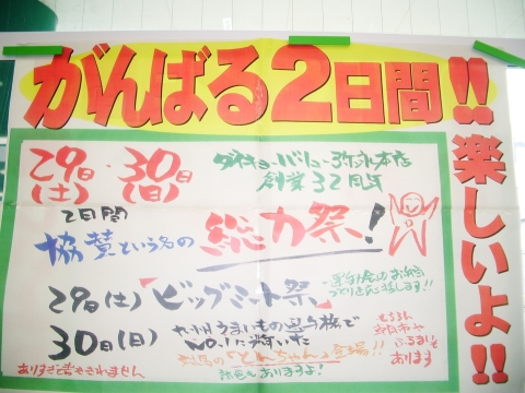 2010_0528_003.jpg
