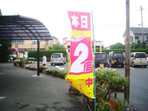 2010_0713013.jpg