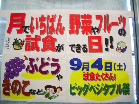 2010_08031_011.jpg