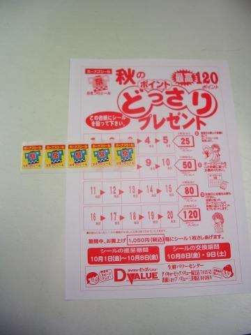 2010_1001019.jpg