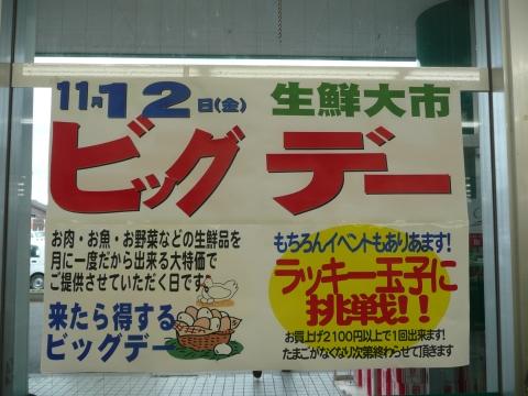 2010_1109012.jpg