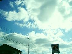 2010_1124003.jpg