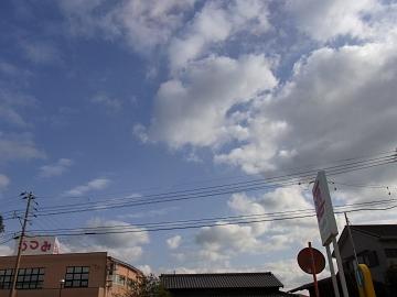 2011_0114006.jpg