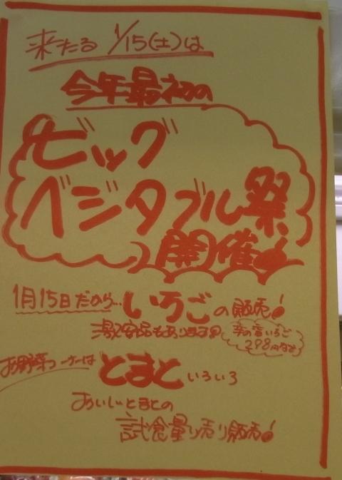 2011_0114010.jpg