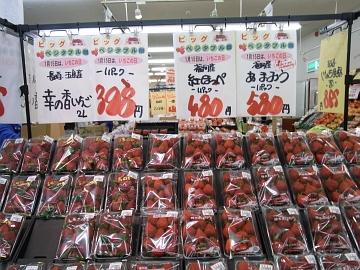 2011_0115003.jpg