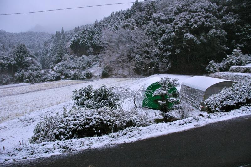 20111224blog1.jpg