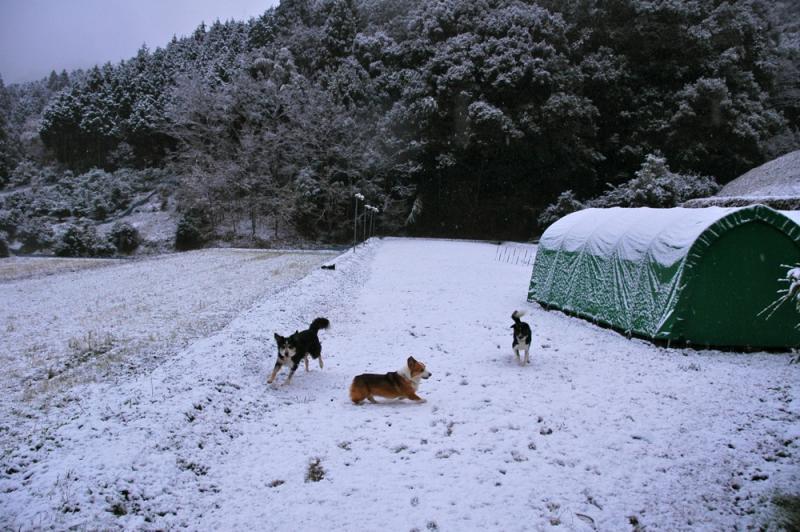 20111224blog2.jpg