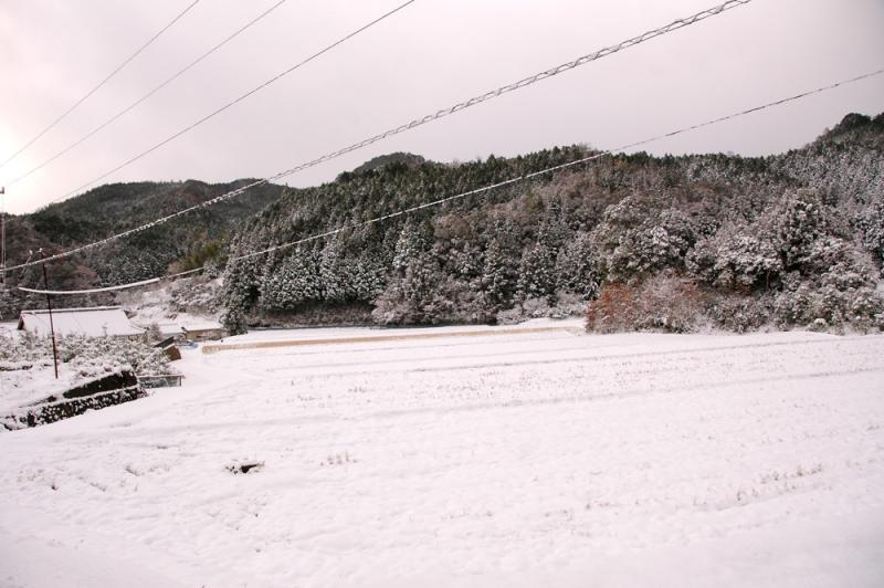 20111225blog2.jpg