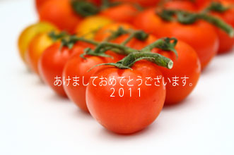 あけましておめでとうございます。2011年。