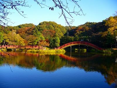 称名寺の橋