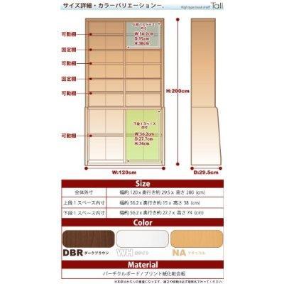 51FKa5215dL__SS400_.jpg