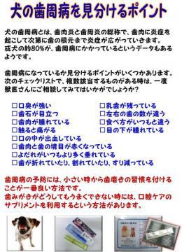 20130307-01.jpg