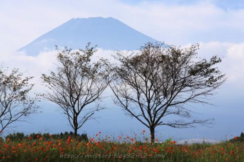 裾野から富士山