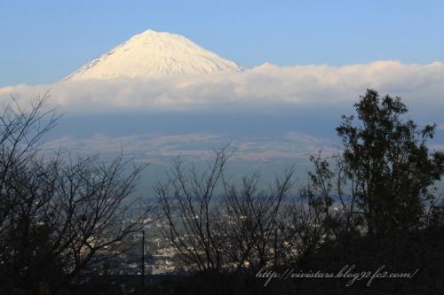 レオの森から富士山