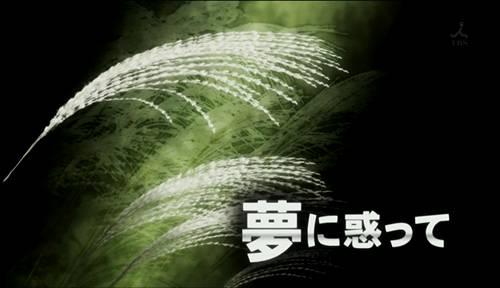 BS003-20110210-002344.jpg