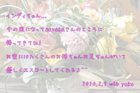 100209_1.jpg