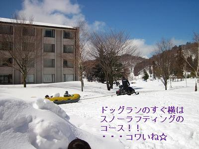 s-IMG_0199.jpg