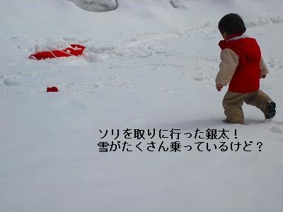 s-IMG_0282.jpg