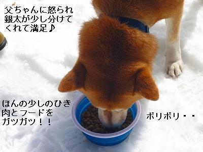 s-IMG_0367_20100324172724.jpg