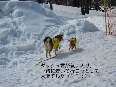 s-IMG_0383_20100324173540.jpg