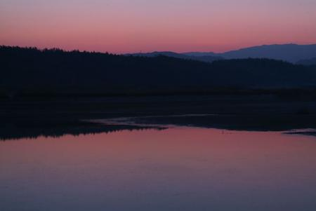 pond-a morning