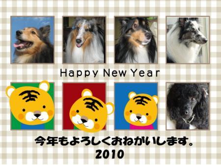 年賀2010.1