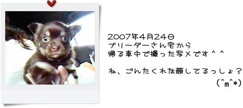 DSC00082.jpg