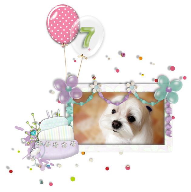 malta_birthday_2010_0521_a.jpg
