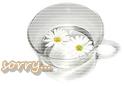mini_mini17.jpg